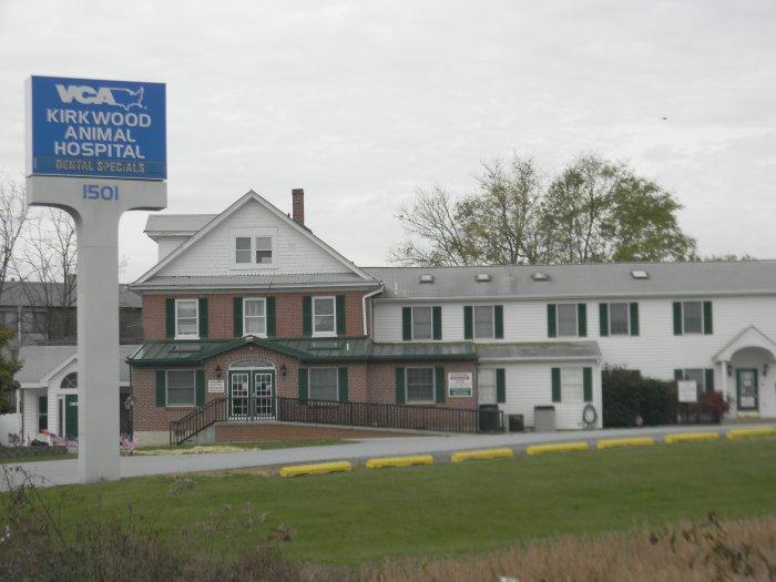VCA Kirkwood Animal Hospital image 7