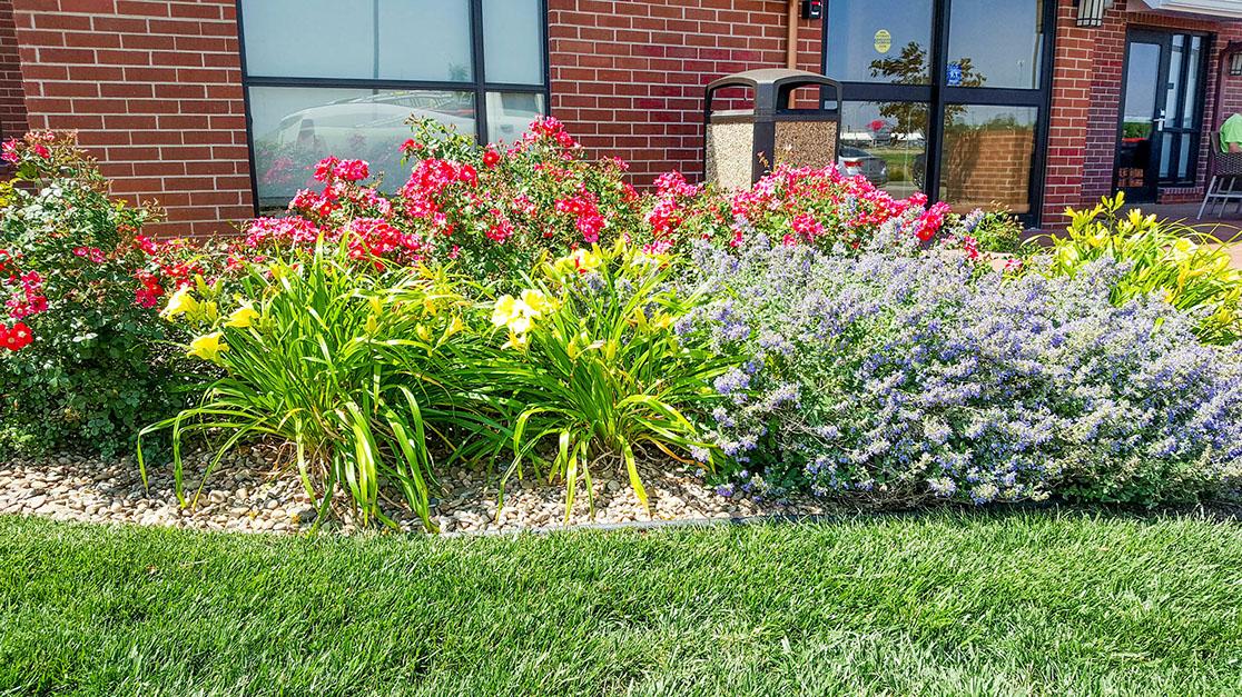 GAS Lawn Pros LLC image 2