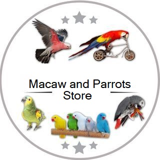 Macaws and Parrots Store image 5