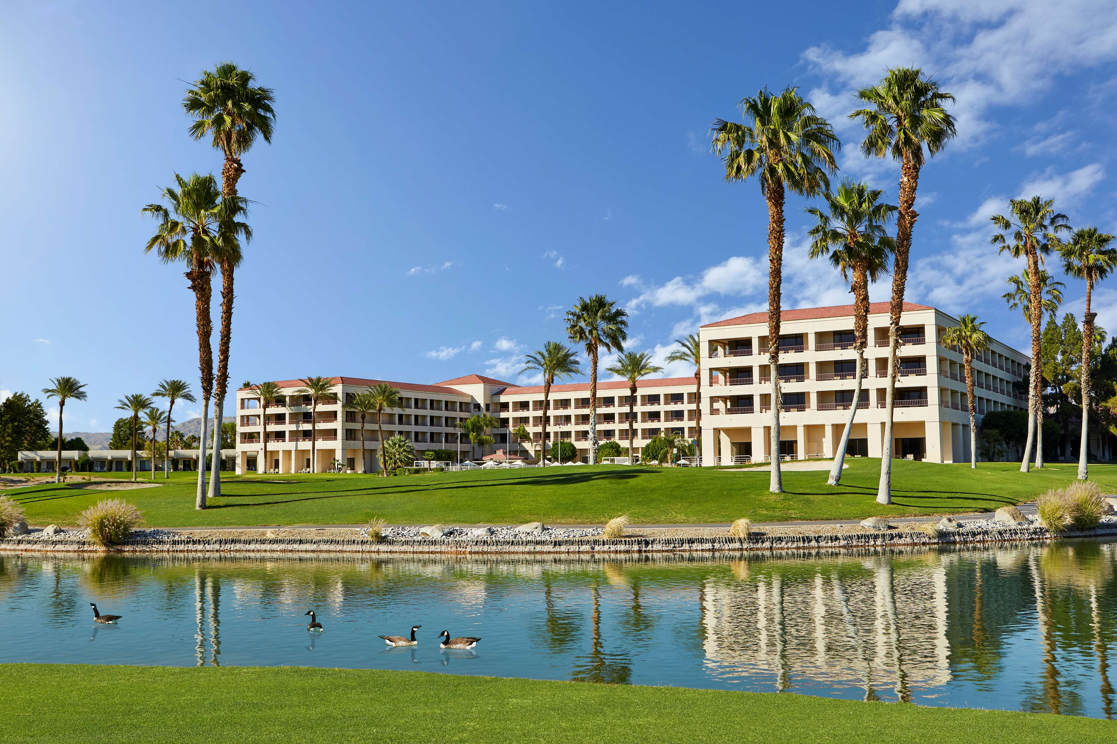 DoubleTree by Hilton Hotel Golf Resort Palm Springs image 6