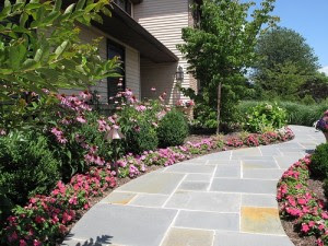 Rossillo Landscaping image 0