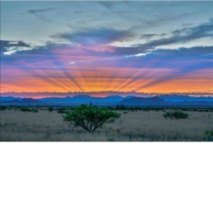 Southeast Arizona RV Rentals & Storage LLC image 6