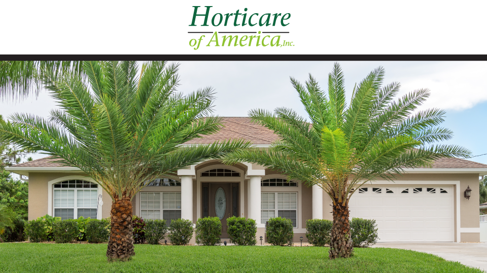 Horticare of America, Inc. image 0