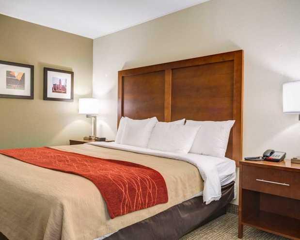 Pet Friendly Hotels Clemson Sc