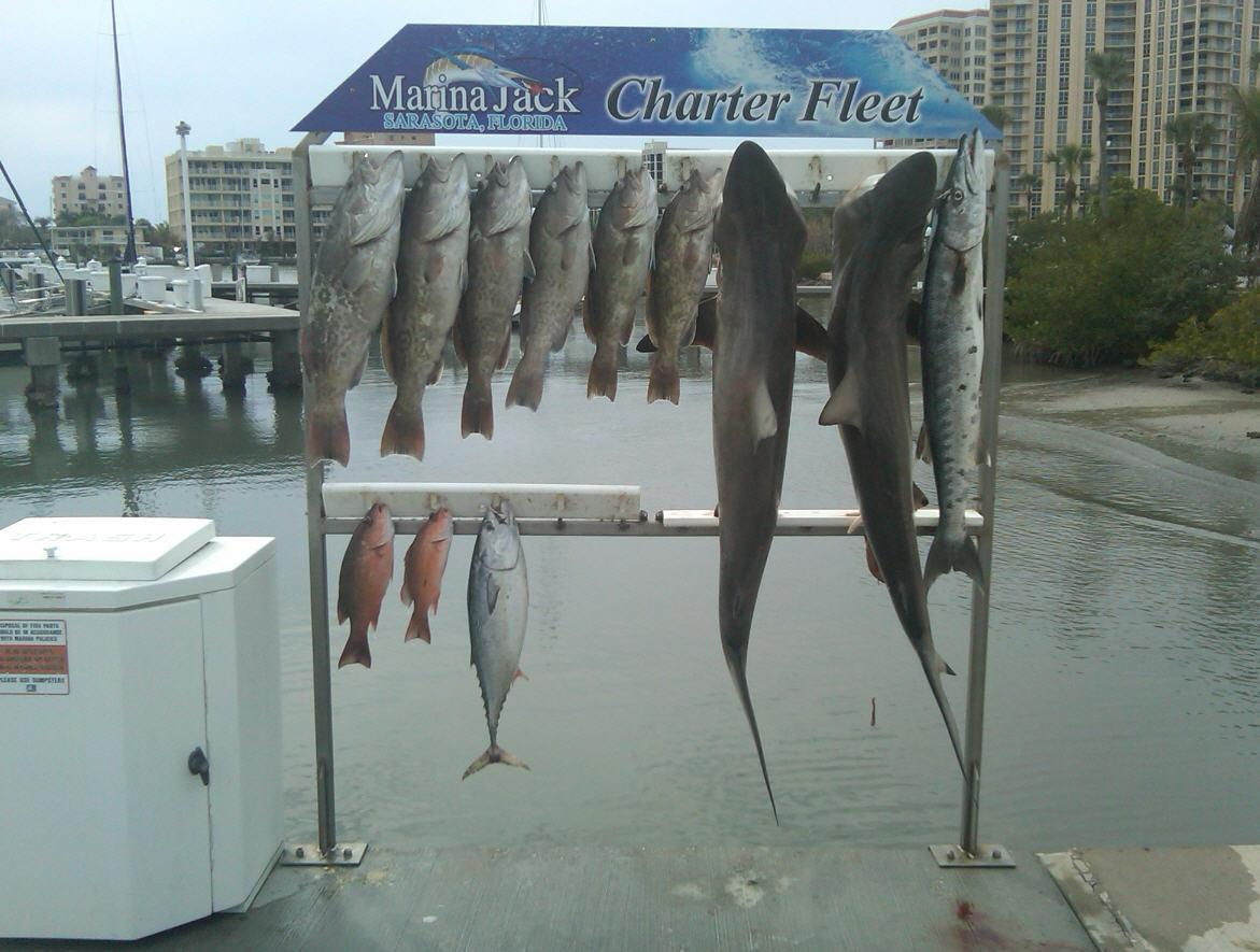 charter boat shark sport fishing coupons near me in