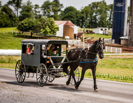 A is for Amish Buggy Rides image 1