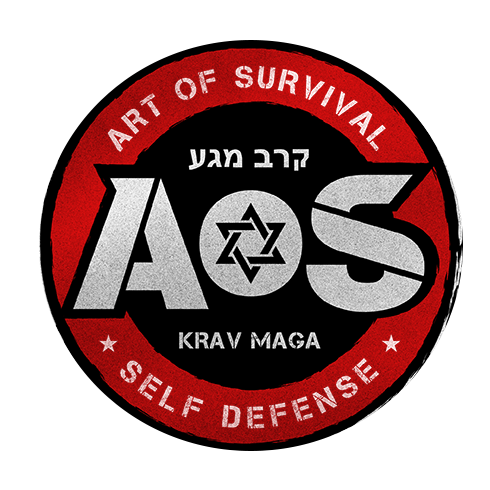 Art of Survival Krav Maga image 6