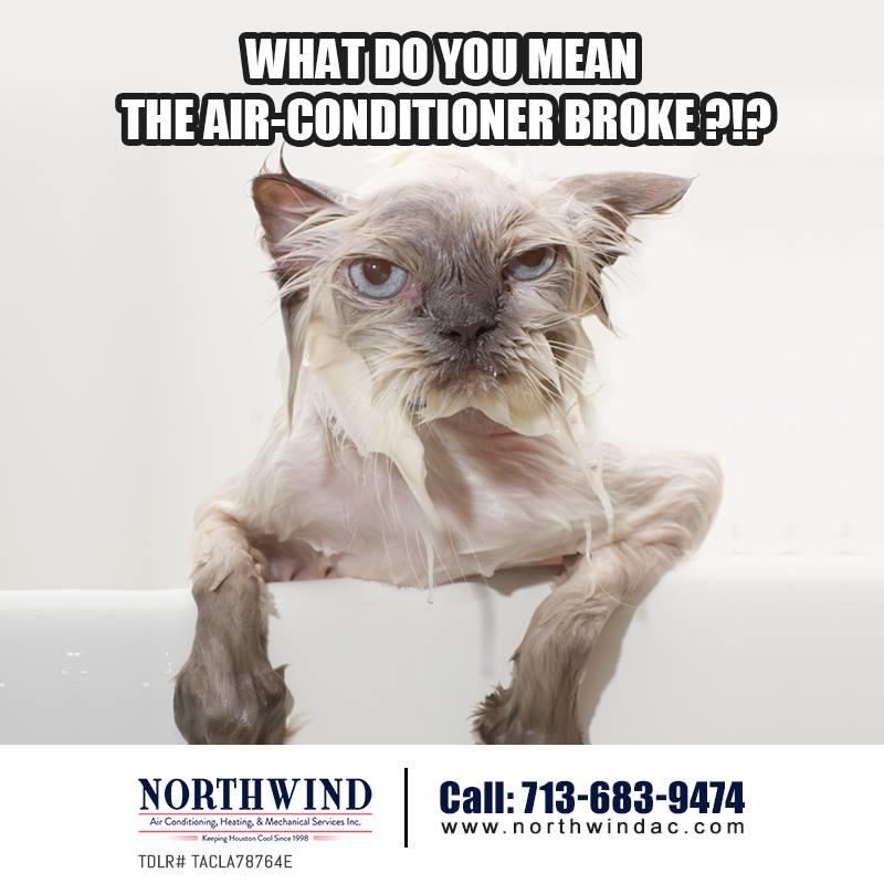 Northwind Air Conditioning, Heating & Mechanical Services image 20