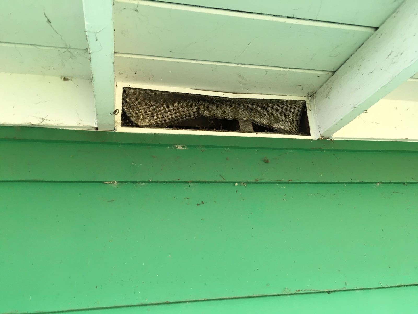 Rodent Solutions Pro - Rodent Proofing | Attic Insulation Removal Oakland, CA image 14