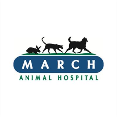 March Animal Hospital image 0