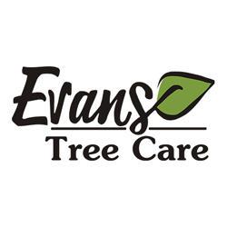 Evans Tree Care