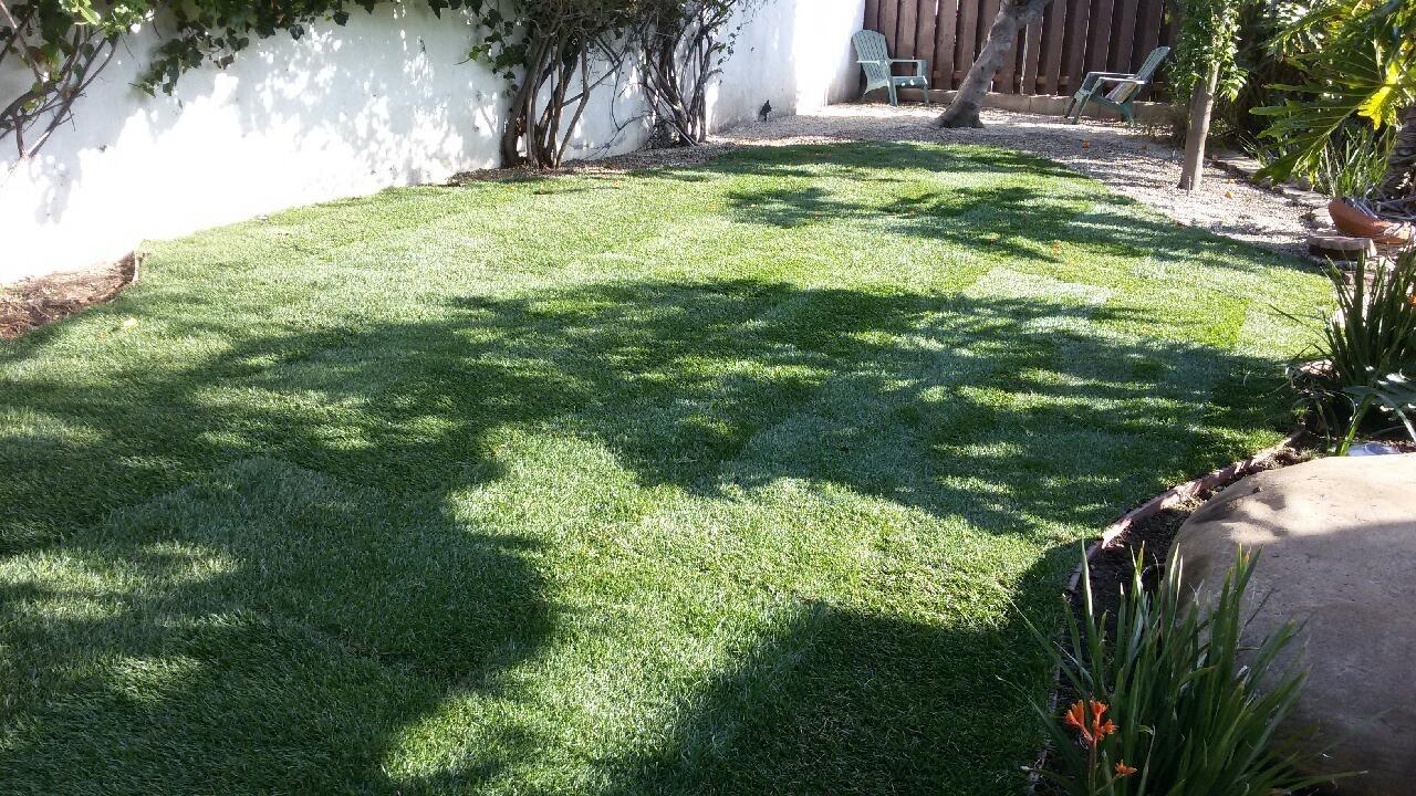 Flores Landscaping image 26