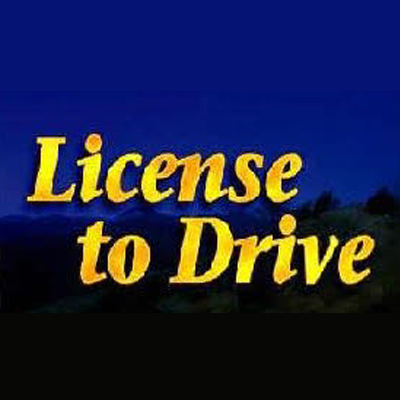 License To Drive image 2