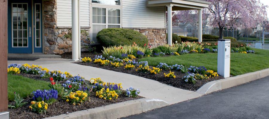 Edwards Landscape & Nursery Inc. image 8