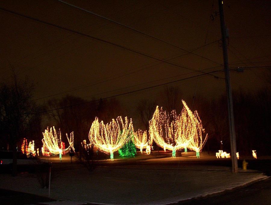 Christmas Creations LLC image 2