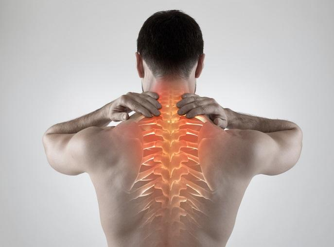 Bayside Physical Therapy, Chiropractic & Acupuncture, PLLC. image 12