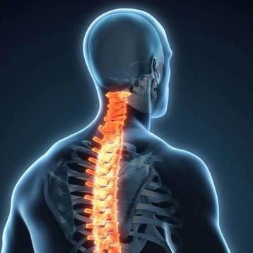 Dr. James Brown Chiropractic image 4
