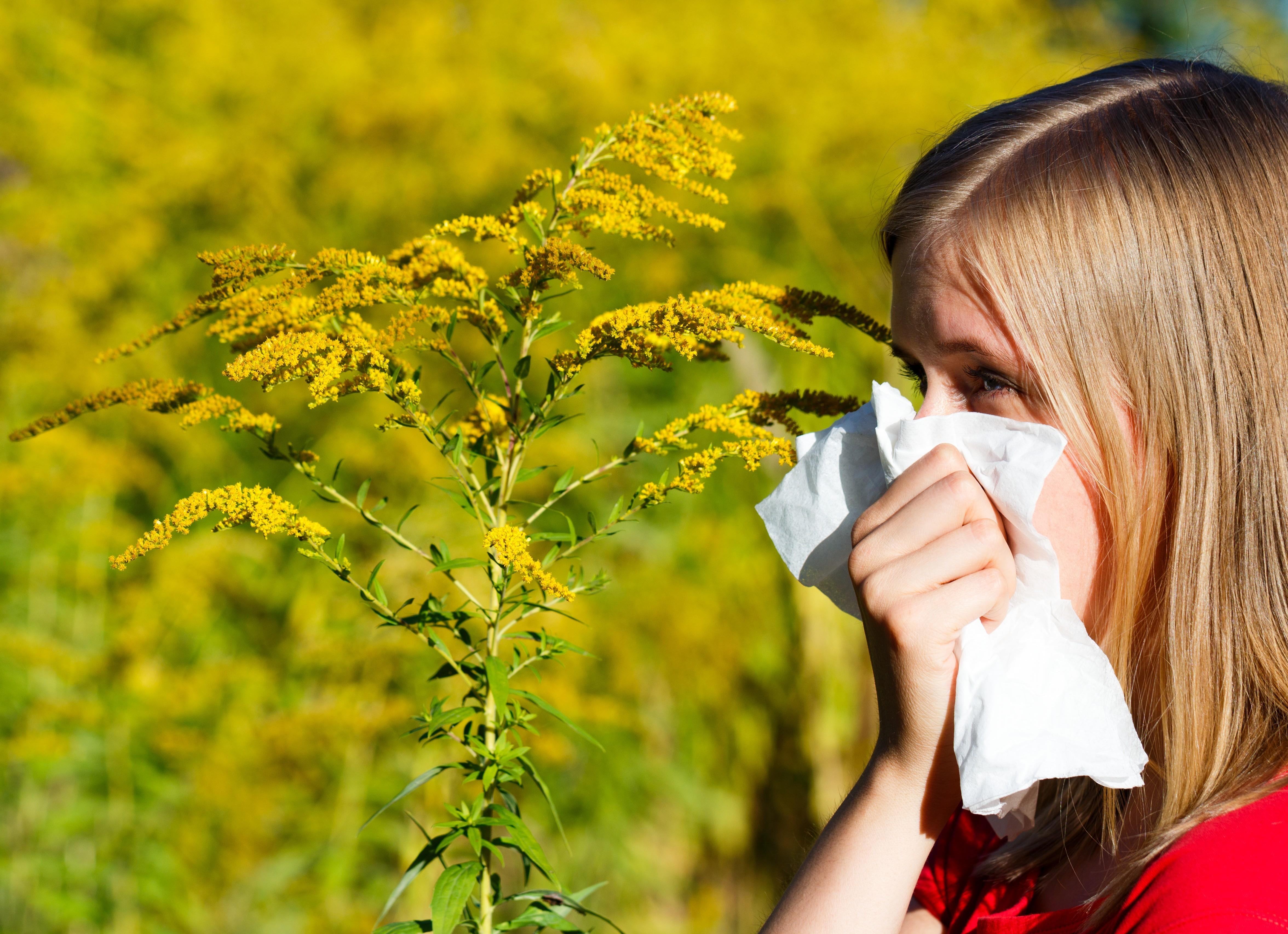 Charleston Allergy & Asthma image 1