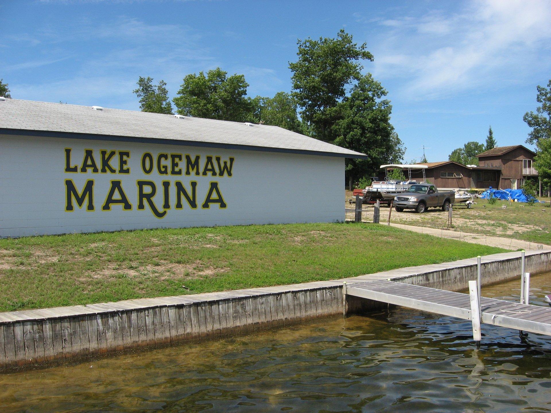 Lake Ogemaw Marina image 3