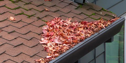 3 Steps to Prepare Your Gutters for Fall & Winter