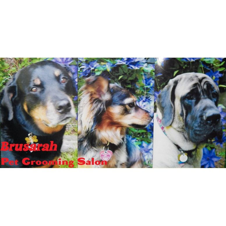Brusarah Pet Grooming Salon
