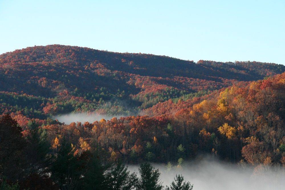 Mountain Property Brokerage