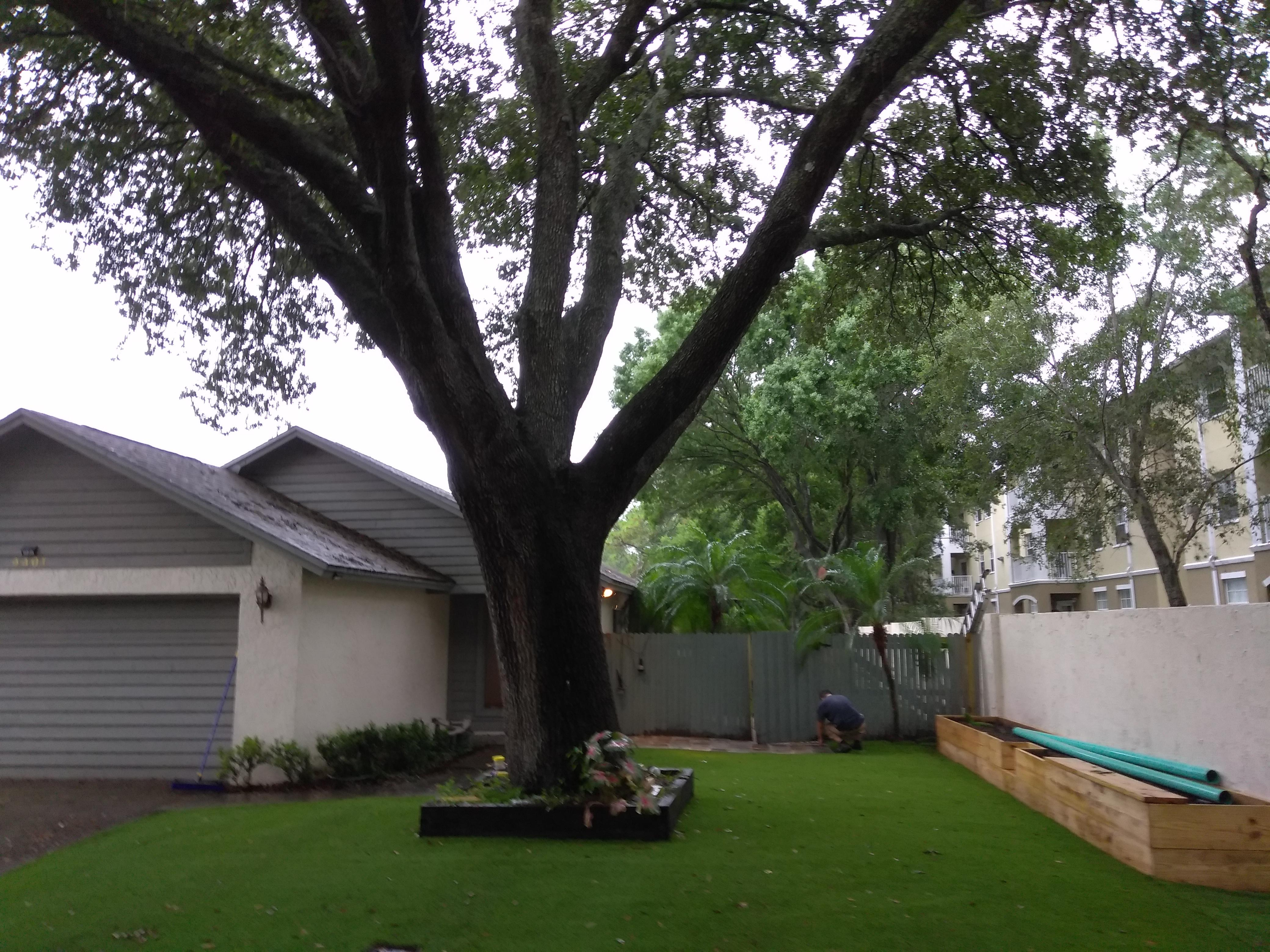 Durable Lawn image 10