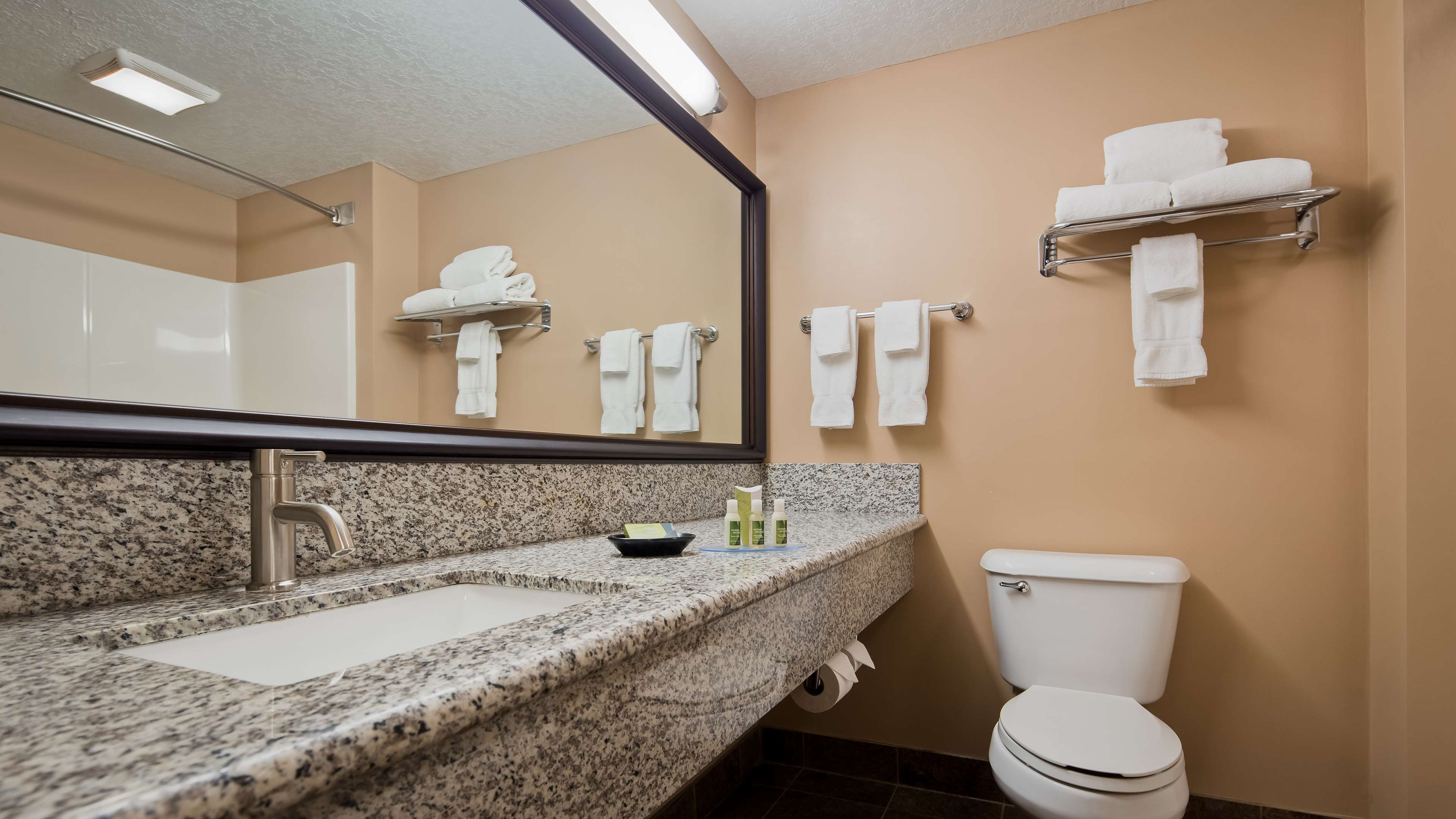 Best Western Plus Coldwater Hotel image 24