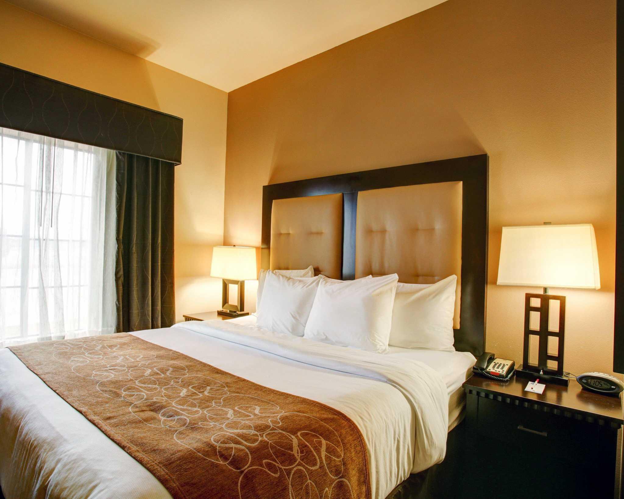 Comfort Suites Buda - Austin South image 10