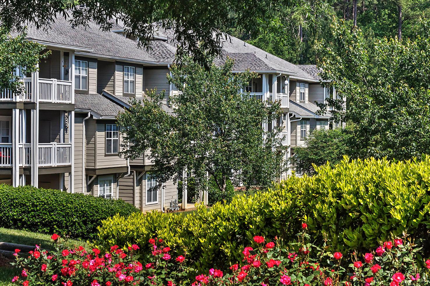 Camden Lake Pine Apartments image 22
