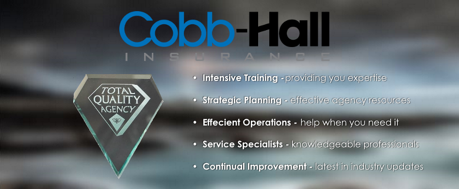 Cobb Hall Insurance Agencies, Inc. image 2