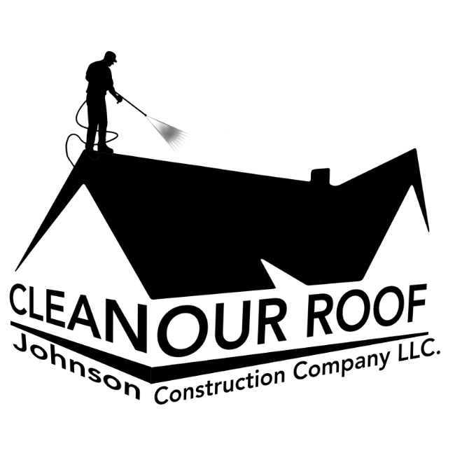 Clean Our Roof image 4