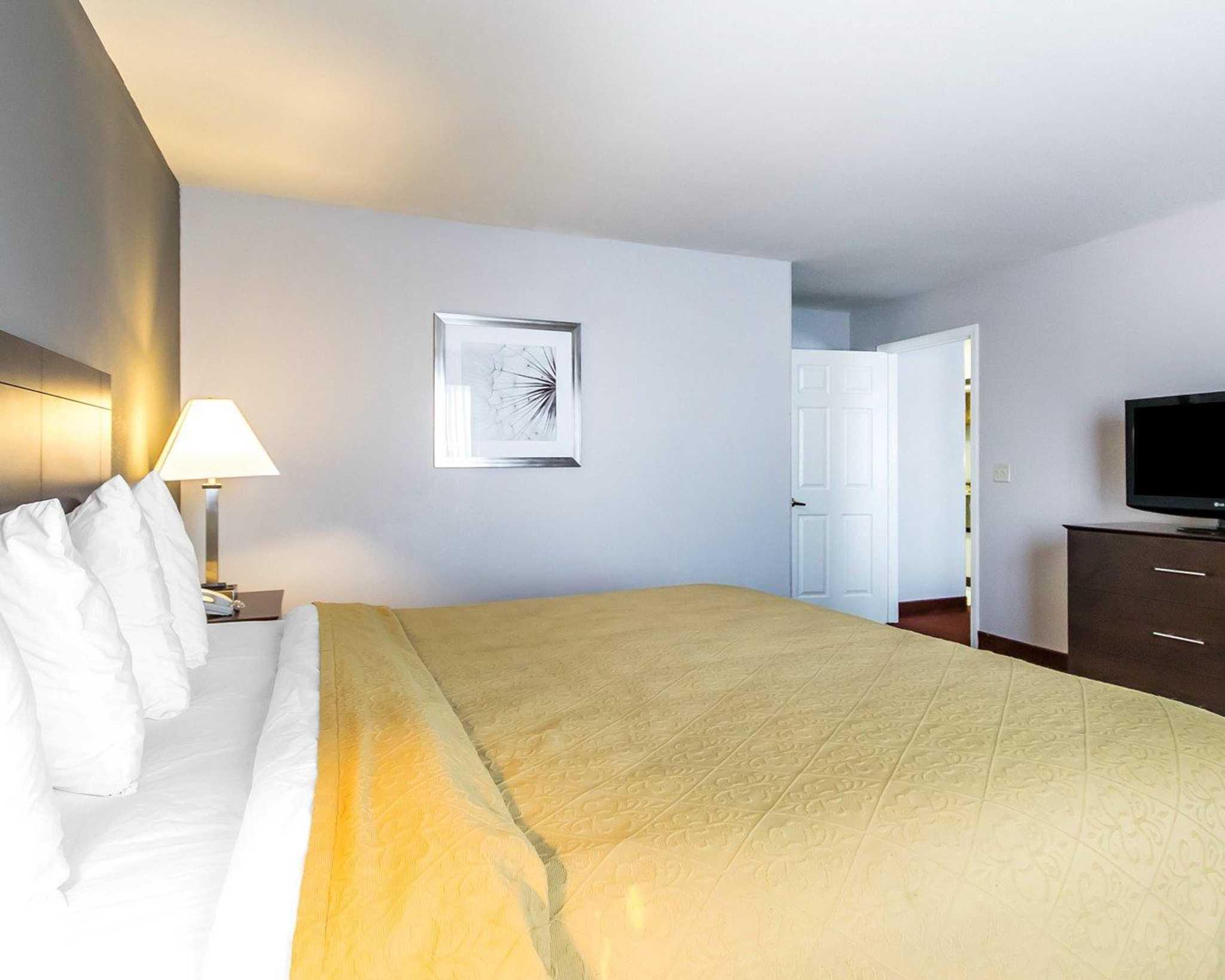 Quality Inn & Suites University/Airport image 37
