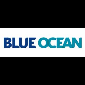 Blue Ocean Realty