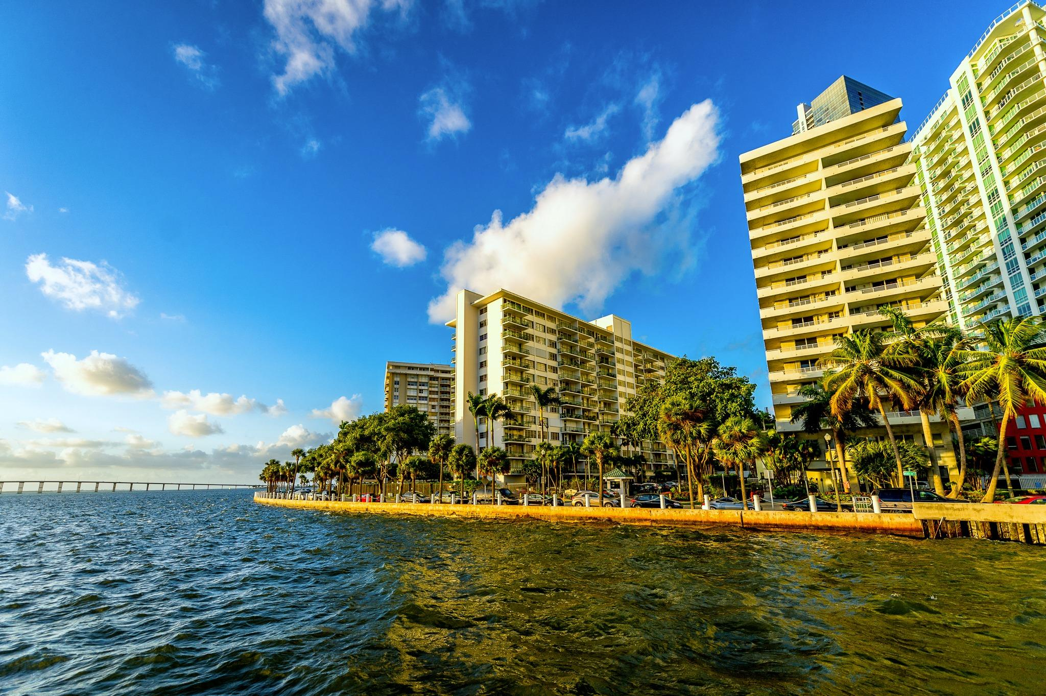 Atton Brickell Miami Hotel Reviews