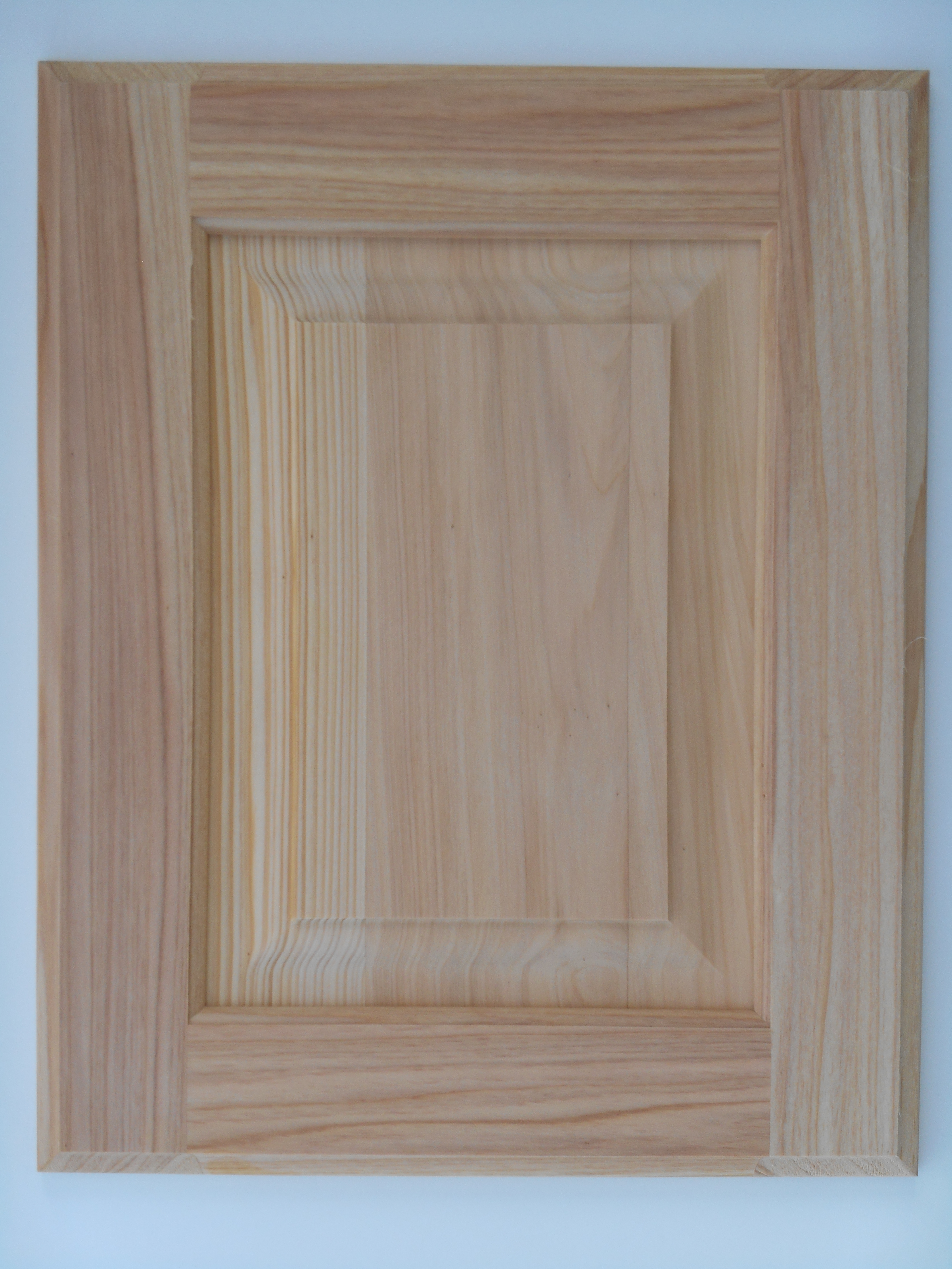 raised panel wood doors ideas, design, pics & examples