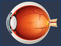 Cleburne Eye Clinic image 3