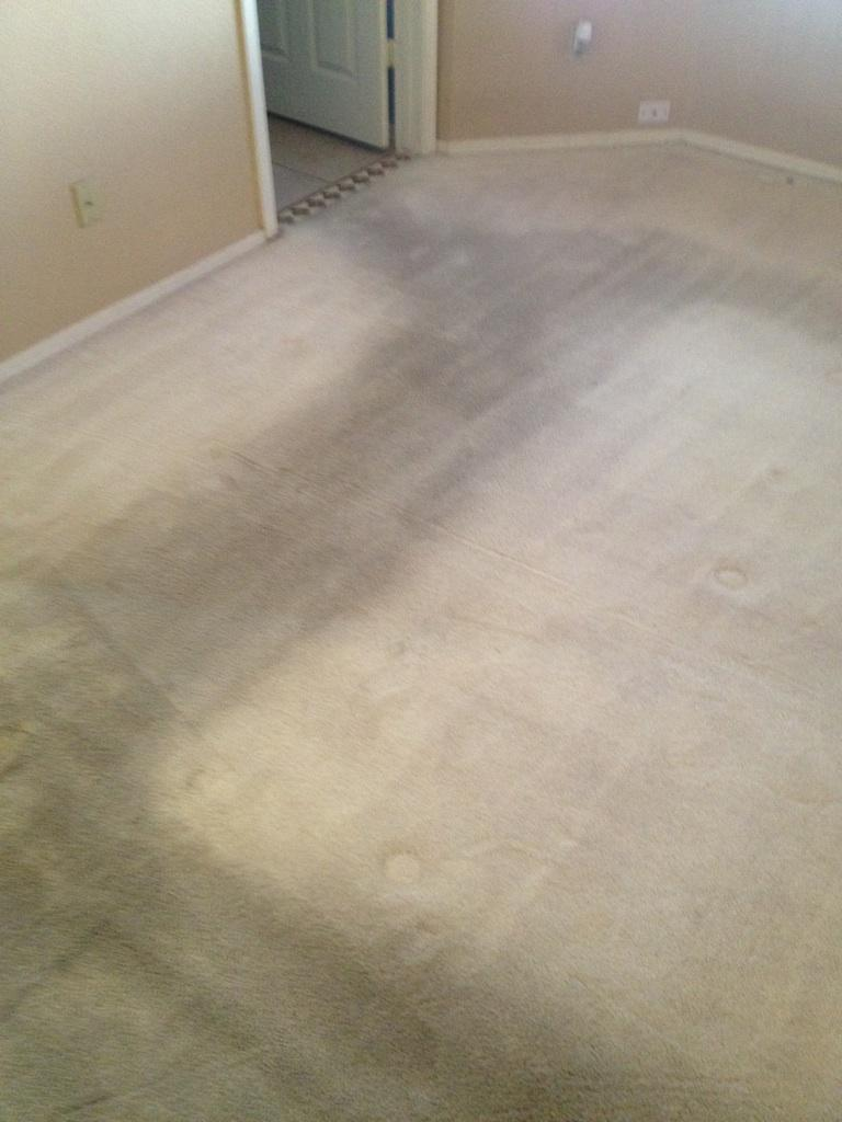 GCS Carpet Tile & Grout Cleaning image 2