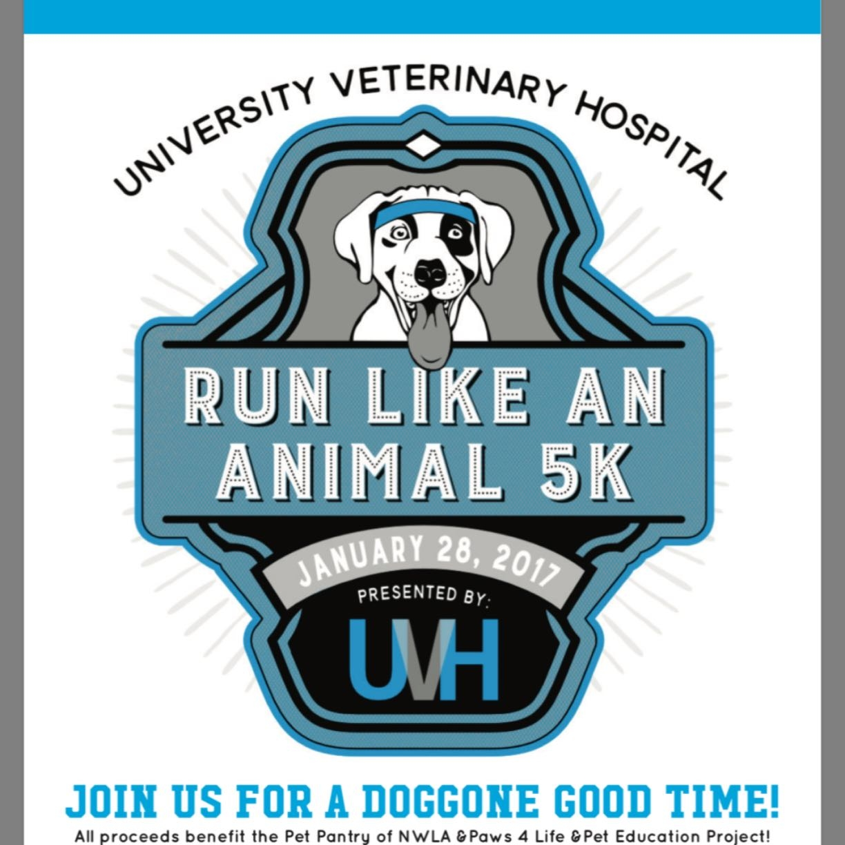 University Veterinary Hospital image 0