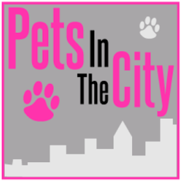 Pets in the City Doggie Daycare, Boarding and Grooming