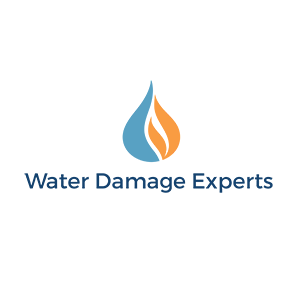 Water Damage Experts, NYC