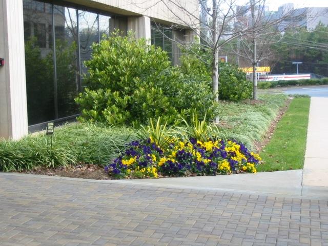 EAM Landscaping, Inc image 1