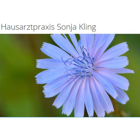 Logo von Hausarztpraxis Sonja Kling