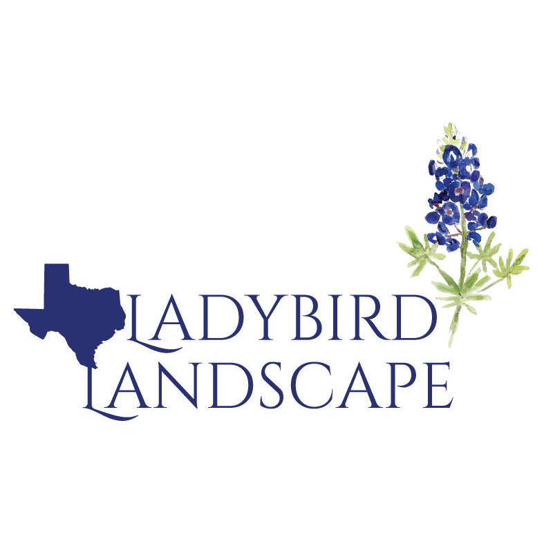 Ladybird Landscape