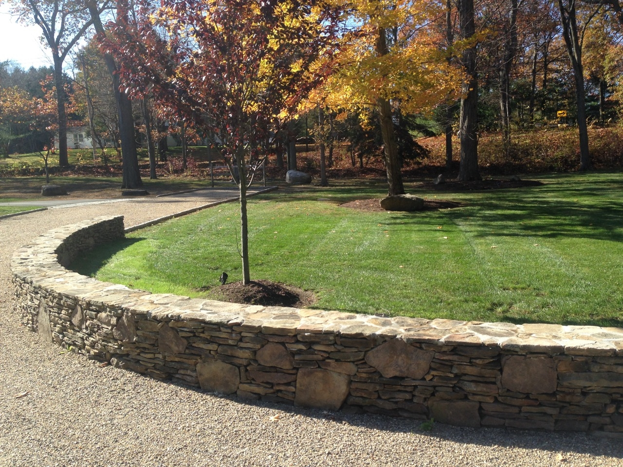 Paulo's Landscaping & Tree Removal LLC image 4