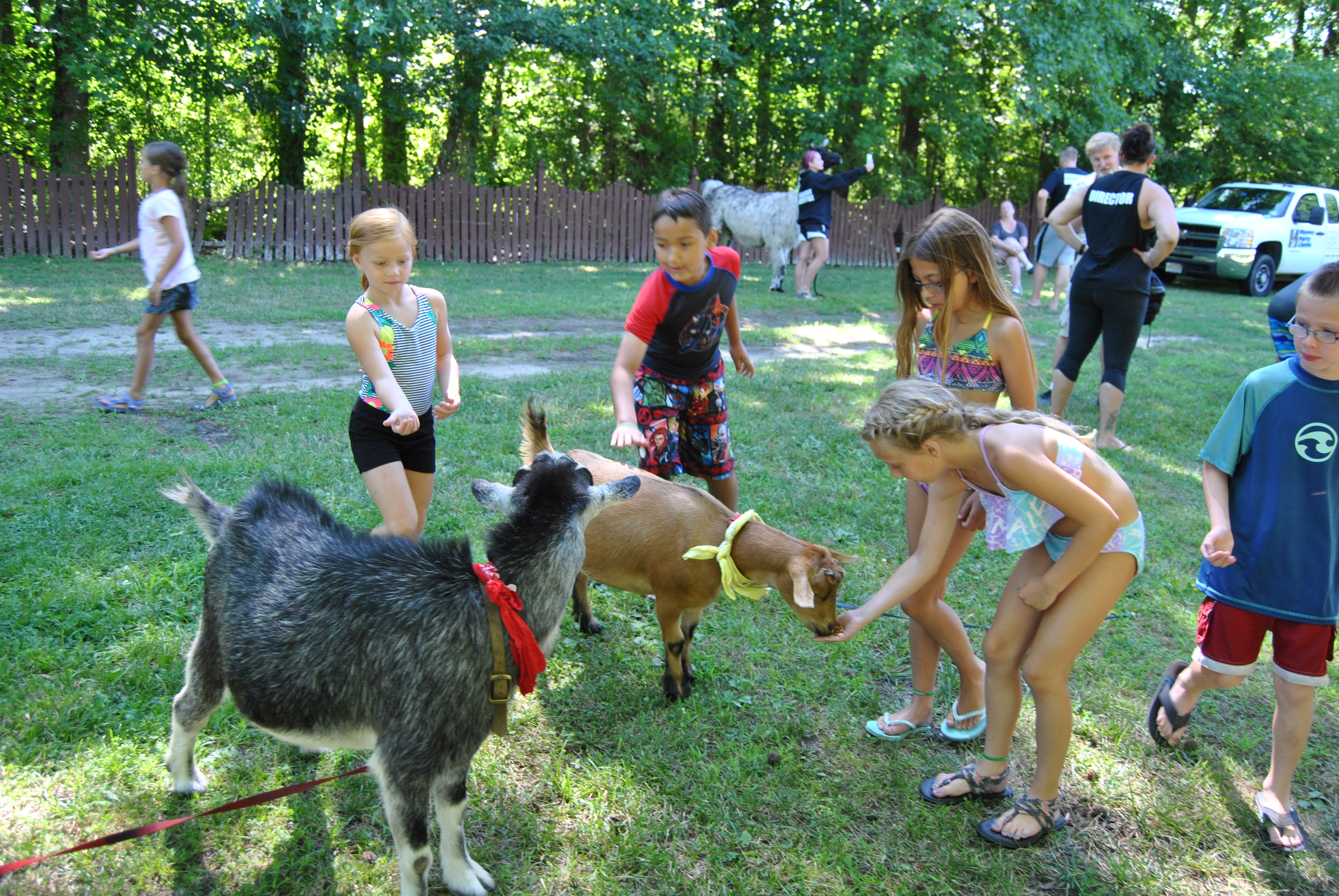 Chartwell's Happy Day Camp Marlton image 54