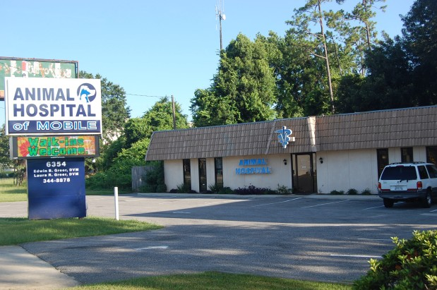 Animal Hospital Of Mobile image 1