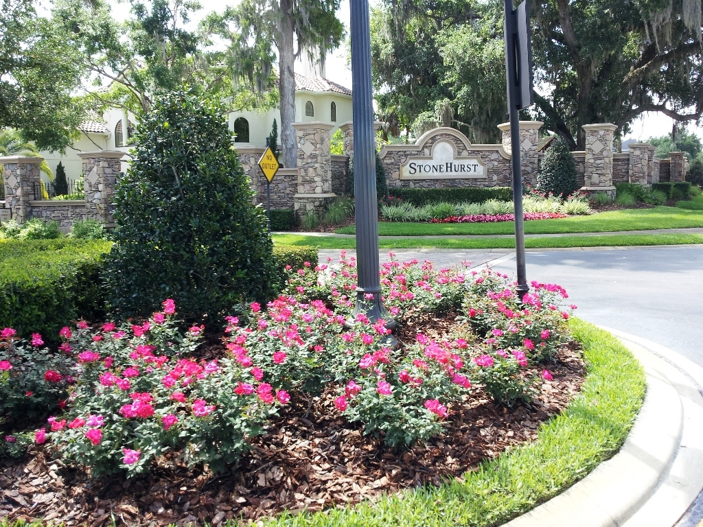 Ds Landscape Maintenance Casselberry Fl Company