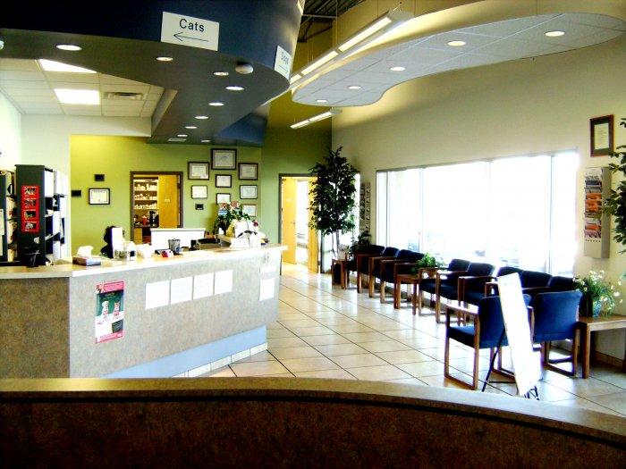 VCA West Mesa Animal Hospital image 5