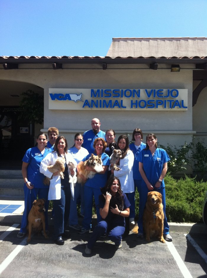 VCA Mission Viejo Animal Hospital- Closed Location image 2